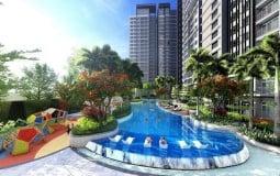 Dự án Celesta Rise: Không gian xanh đáng sống tại Nam Sài Gòn