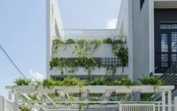 Không gian sống tràn ngập cây xanh trong ngôi nhà 100m2