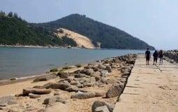 Bình Định sắp có khu trung tâm đô thị du lịch biển rộng 1.772ha