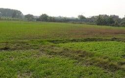 Kiểm tra việc quản lý đất đai tại 4 quận, huyện thuộc Hà Nội