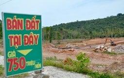 Phú Quốc lại tạm dừng tách thửa, chuyển mục đích sử dụng đất