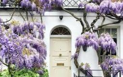 Trang trí cửa nhà bằng hoa đẹp mơ màng theo phong cách London