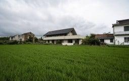 Tìm về House G – Ngôi nhà bình yên, hồn hậu nằm giữa miền quê thanh bình