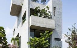 Ngôi nhà bê tông xanh mát với 7 khu vườn lệch tầng ở Sài Gòn