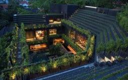 Choáng ngợp trước ngôi nhà hệt như một khu rừng nhiệt đới của đại gia đình, ấn tượng nhất là khu vườn xanh mướt trên mái