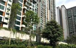 Cú hích mới cho thị trường bất động sản