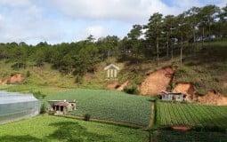 Đất nông nghiệp là gì, có được xây nhà, cấp sổ đỏ không? Chia sẻ về quy hoạch đất nông nghiệp