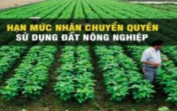 Quy định về hạn mức nhận chuyển quyền sử dụng đất nông nghiệp của cá nhân, hộ gia đình