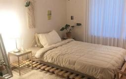 Biến tấu với nội thất gỗ thông pallet siêu đẹp đang hot rần rần