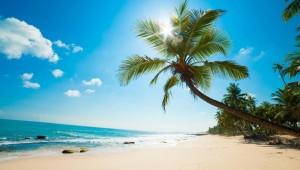 Chính phủ sẽ quy hoạch Phú Quốc trở thành một đặc khu kinh tế tại Việt Nam