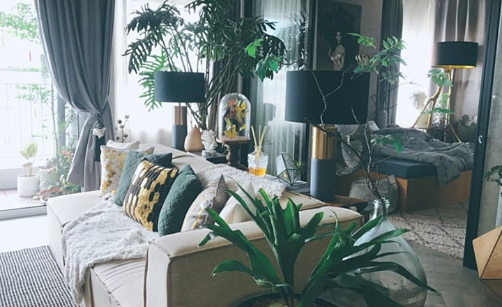 """Đỗ An - chồng người mẫu Lê Thúy dành 2 năm để thiết kế khu vườn trong nhà như """"rừng nhiệt đới"""""""