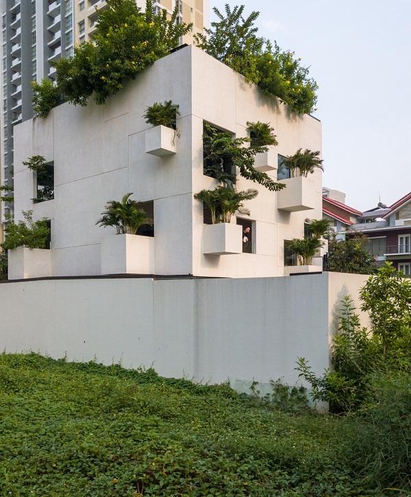 Ngôi nhà ngập tràn nắng gió, cây xanh ở TP.HCM